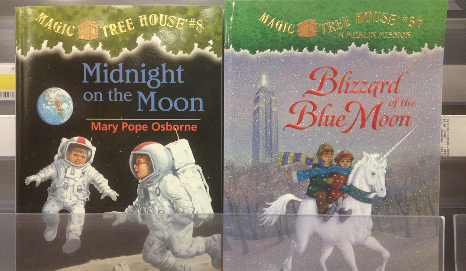 Magic Treehouse Books Read Online