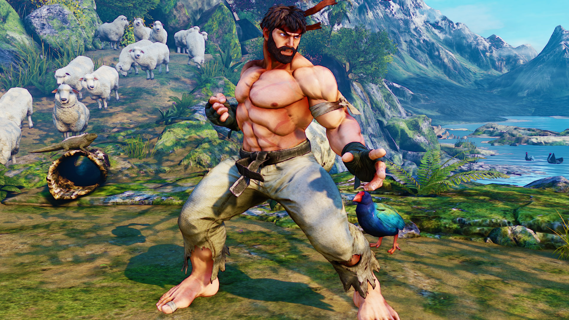 Street Fighter 5 Collector's Edition and pre-order bonuses ...