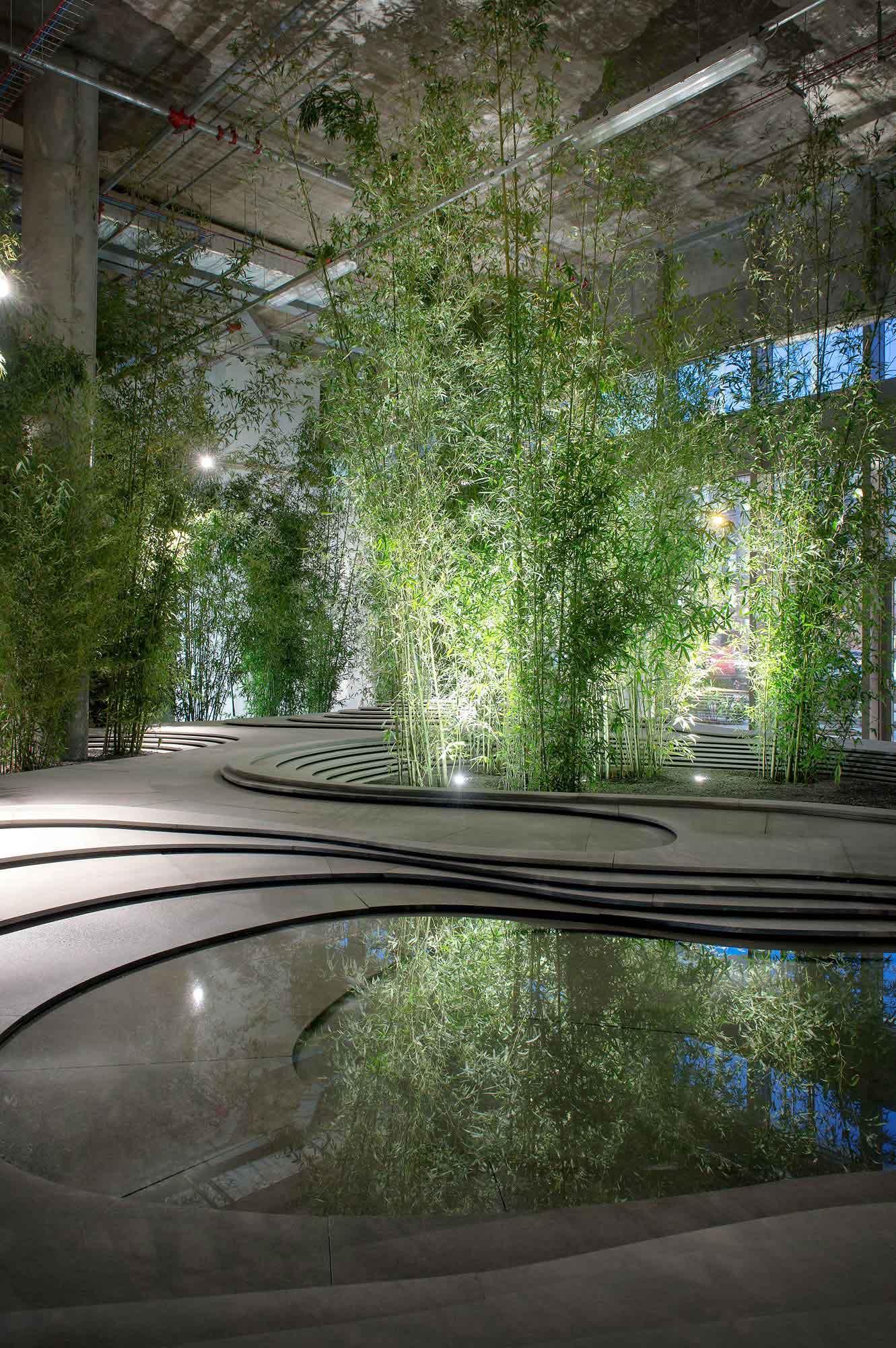 Pond Design Melbourne