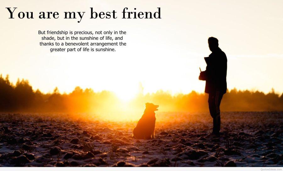 I Miss You My Best Friend Wallpapers Walljdiorg