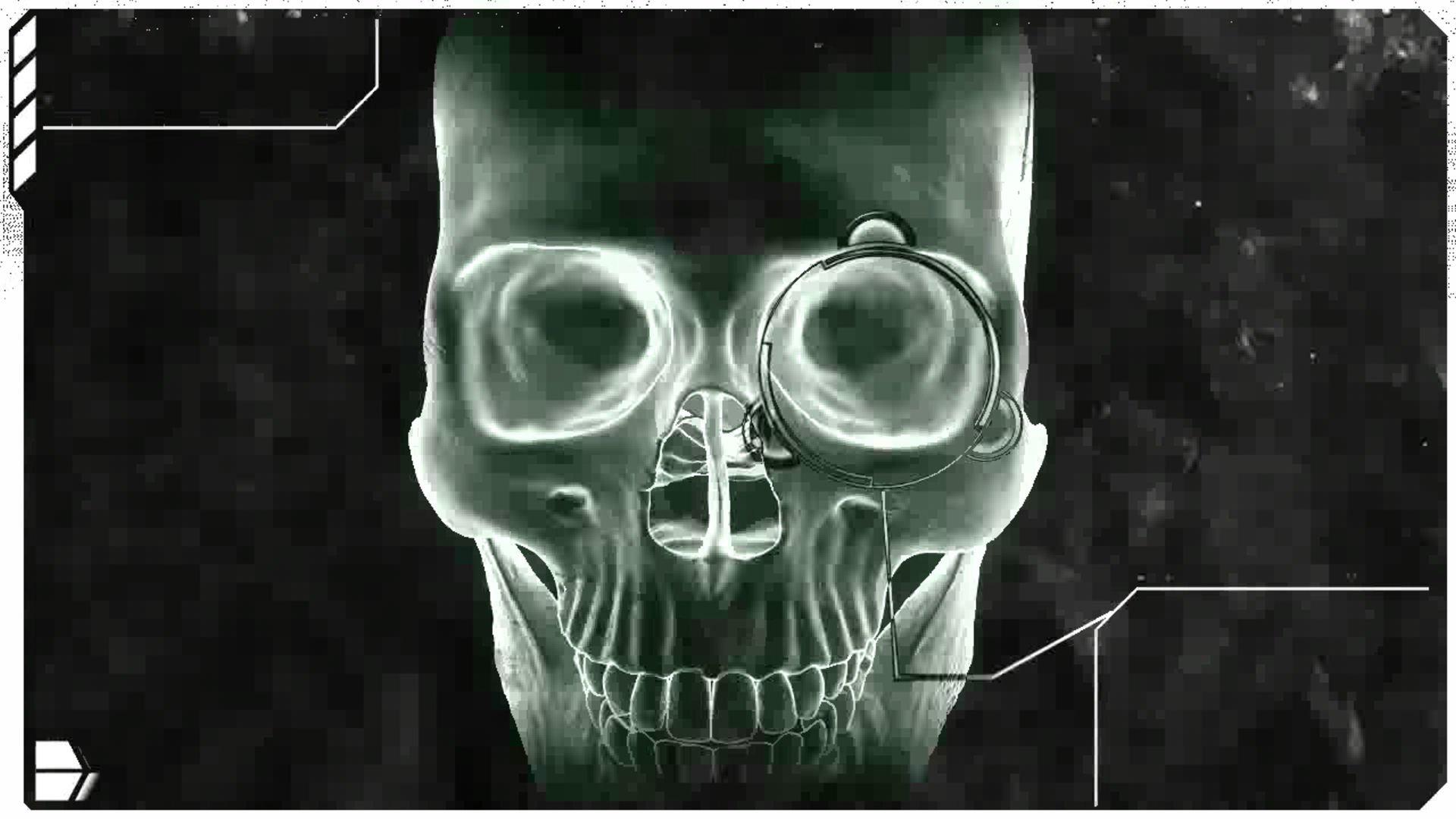 ... Skull Middle Finger Wallpaper