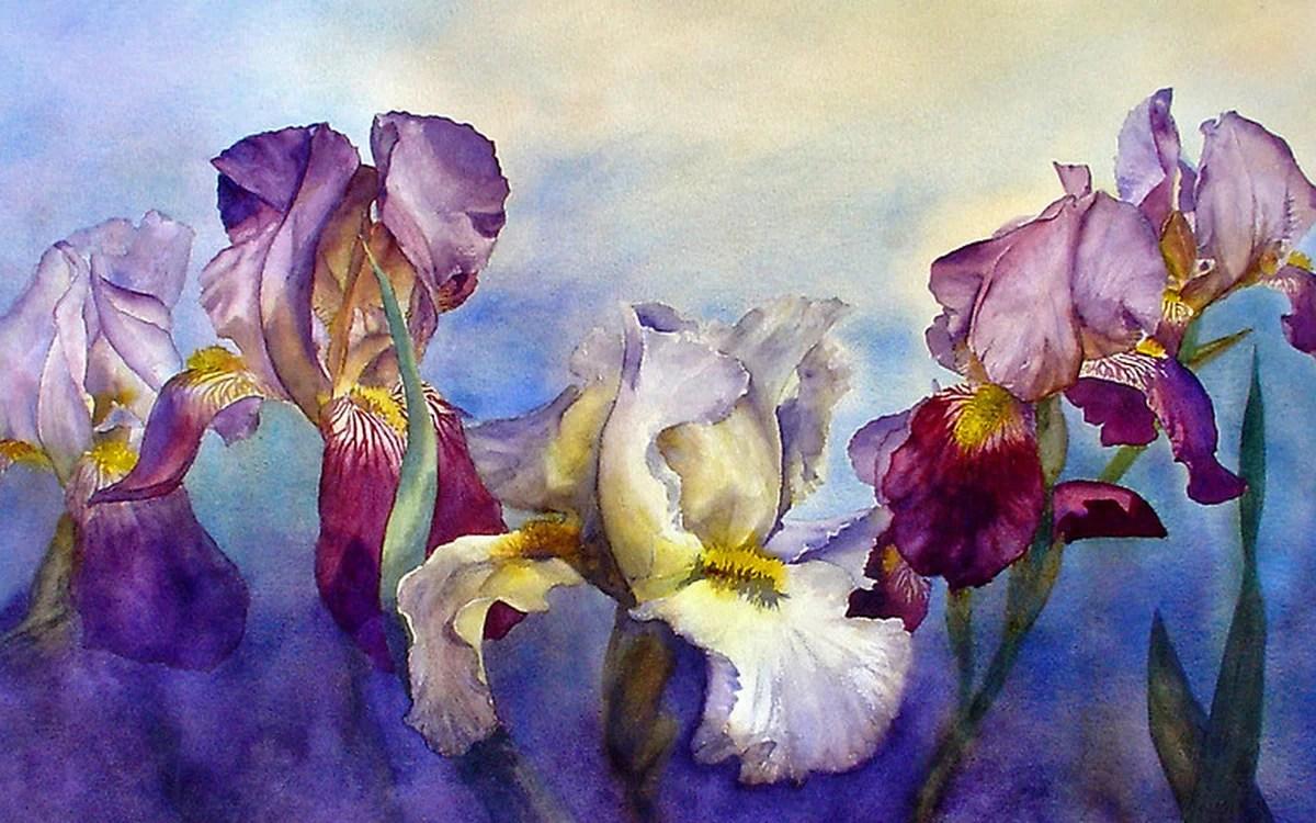 watercolor paintings of flowers - 800×583