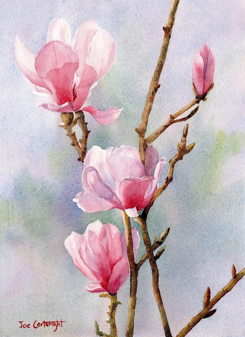 watercolor paintings of flowers - 736×1013