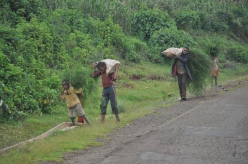 6 Children Working Hard Macsinafrica