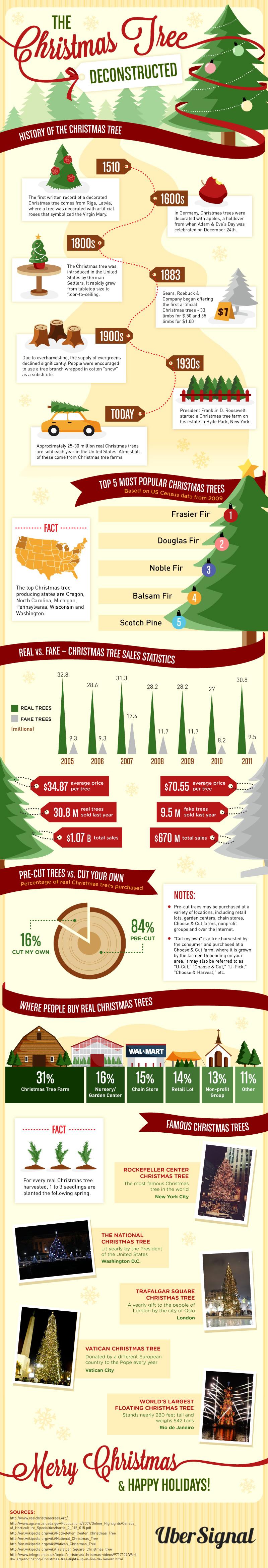 Christmas Tree Farms My Area