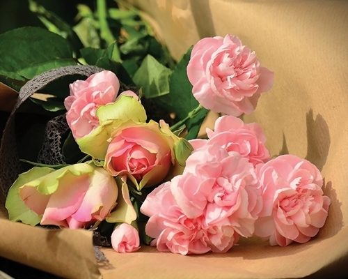 Arranging a Funeral - Bakers Funeral Services
