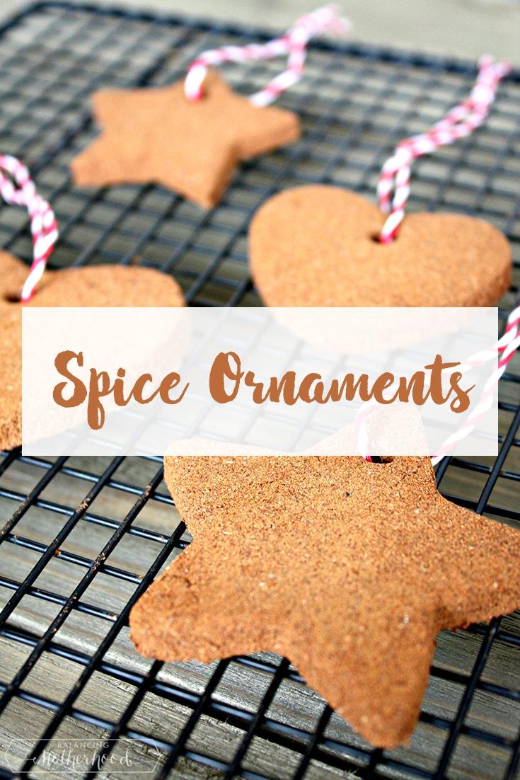 Spice Ornaments Pinterest