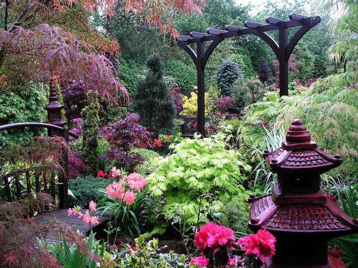 Best Wood Raised Vegetable Garden