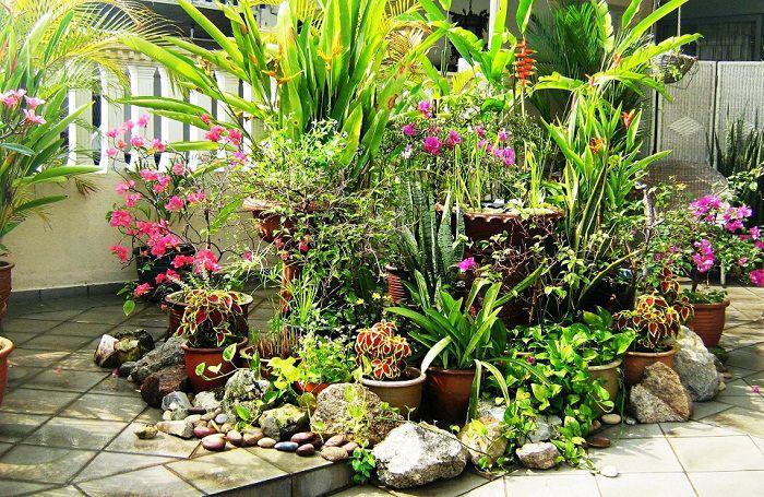 Home Garden Box Design