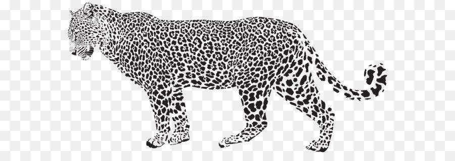 Snow Leopard Cheetah Clip Art Jaguar Silhouette Png Transparent Clip Art Image 8000 3773