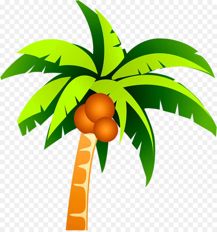 Coconut Tree Clip Art Coconut Tree Vector Material Png 2946 3119 Transprent Png Free Download