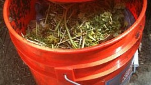 How To Make Your Own Composter For Cheap