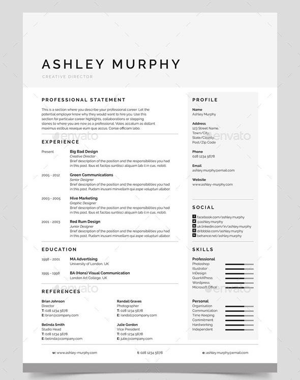 30 Best Resume Template Designs 2019 Bashooka