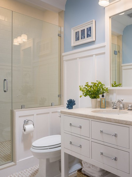 Light Blue And Brown Bathroom Ideas