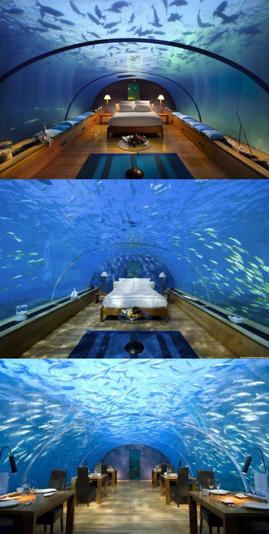 21 Photos Of Amazing Snaps The Best Suites And Restaurants In The World Beautyharmonylife