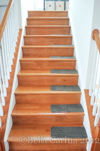 The Things We Do For Our Pup…Diy Stair Treads Bella Carina | Carpet Stair Treads Home Depot | Pattern | Lowes | Metal Stair | Wood Stair | Garden