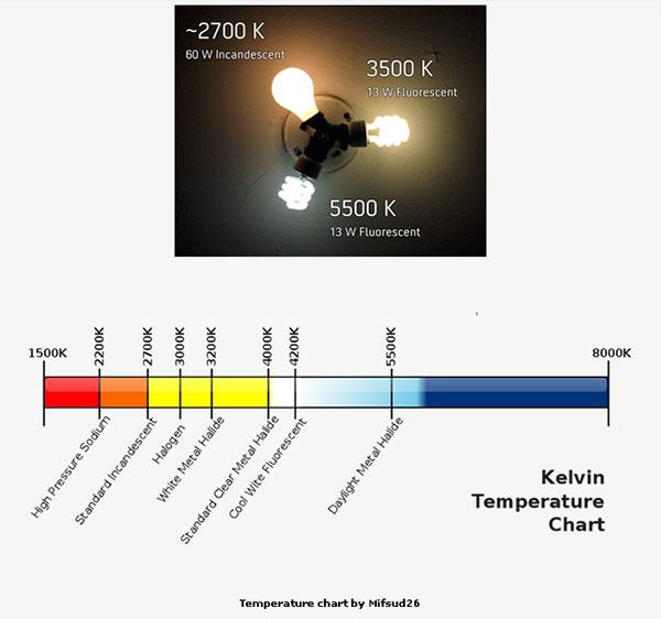 Color Spectrum Light Bulb Types