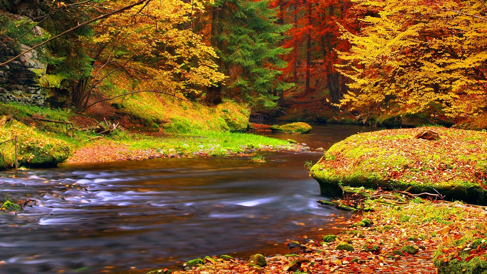 Fall Wallpaper 1600x900