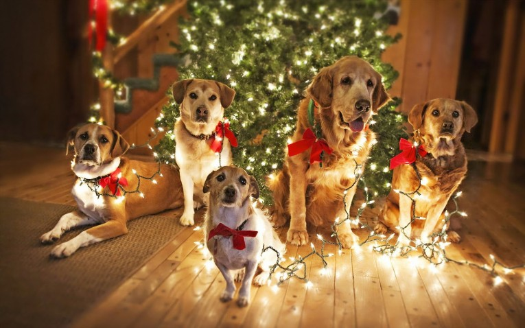 Dogs Christmas Cute Unique Trees