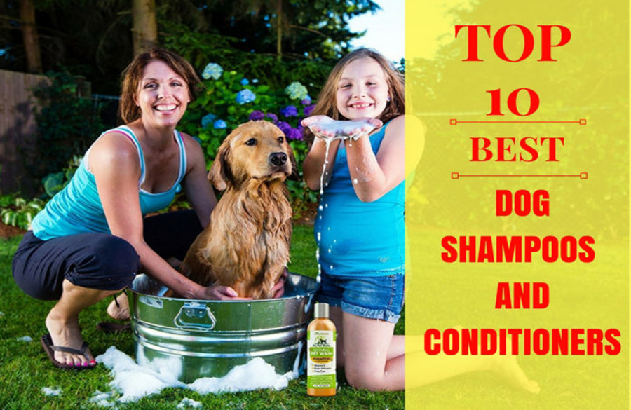 Dog Shampoo And Conditioners