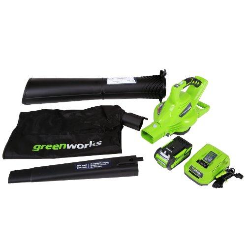 Best Electric Leaf Blower Vacuum