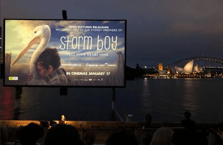 Storm Boy 2019 Cast, Budget, Box office, Trailer, Reviews, Release date, Story