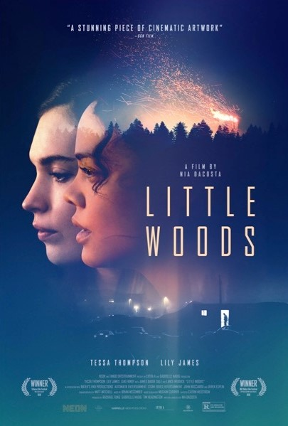 Little Woods (2019) poster