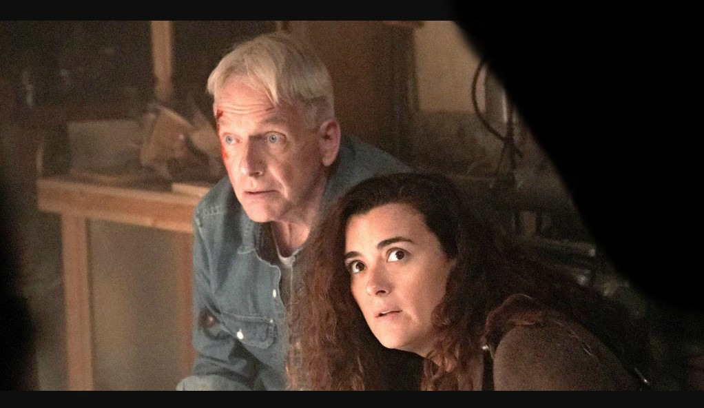 NCIS Season 17 | Cast, Episodes | And Everything You Need to Know