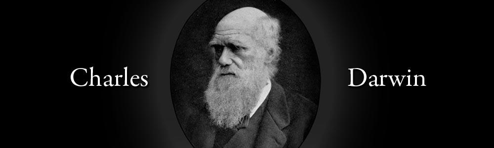 Darwin Evolution Fossils Charles