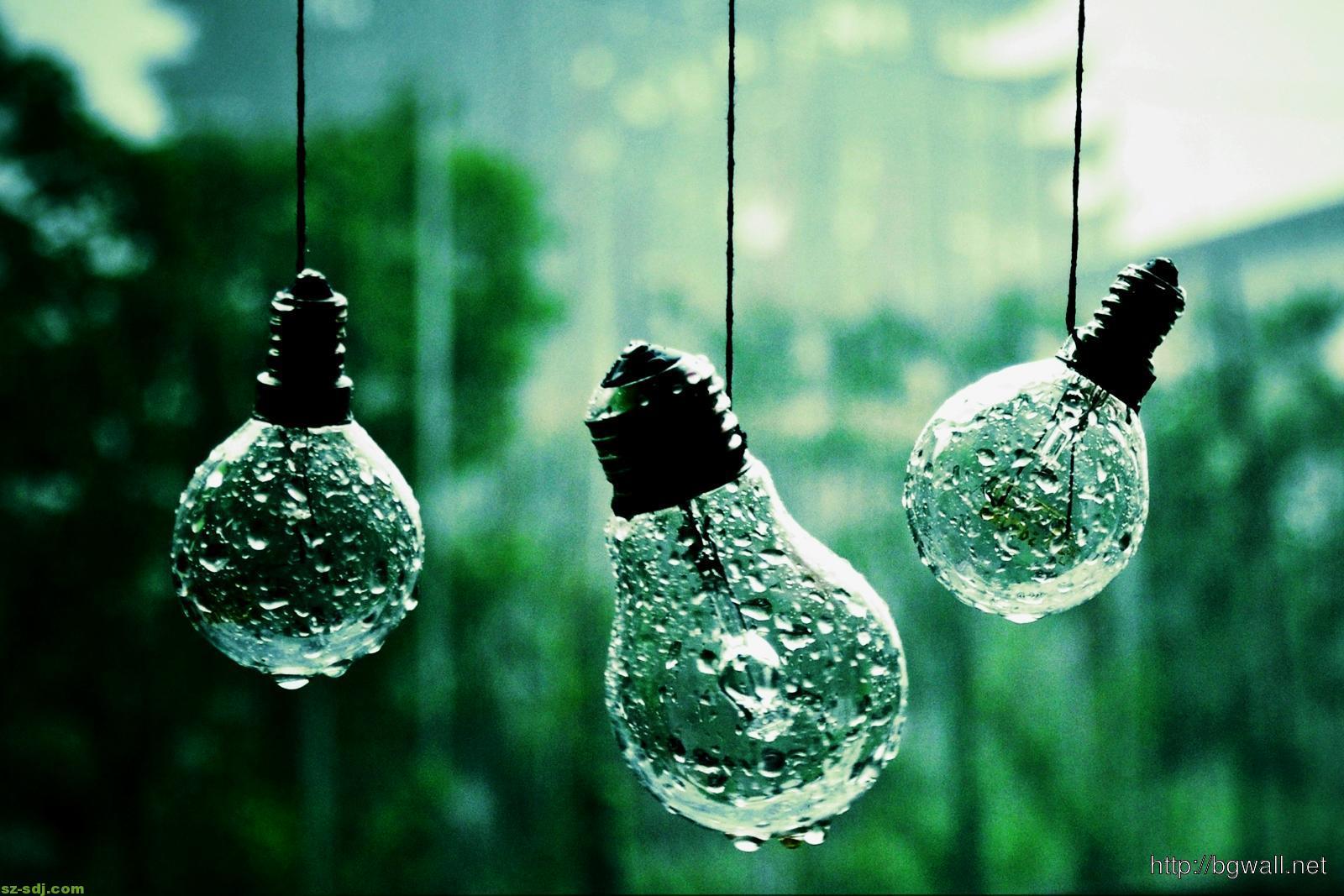 Flower Light Bulb