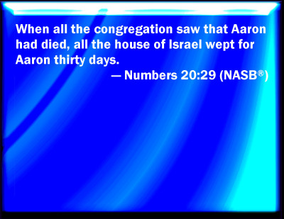 Bible Verse Powerpoint Slides for Numbers 20:29