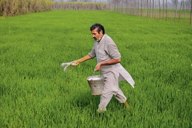 Working Farmers Insurance