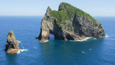 Fishing Charters Bay of Islands, New Zealand | Big Fish ...