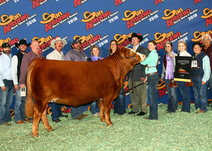 2018 Cattle Champions Sure Champ