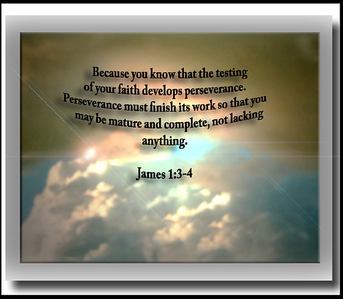 PERSEVERANCE BIBLE VERSES   PERSEVERANCE BIBLE VERSES