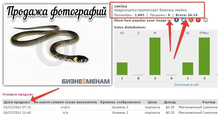 Tulos luomalla verkkosivustoja tilauksesta - esimerkkejä mainoksista