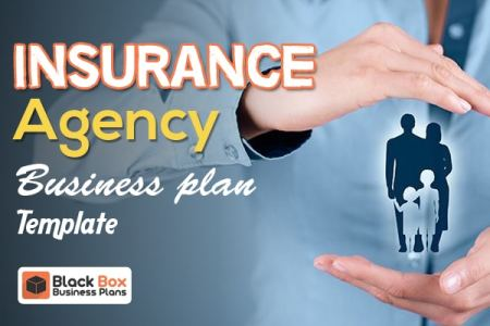 Insurance Agency Business Plan Template   Black Box Business Plans
