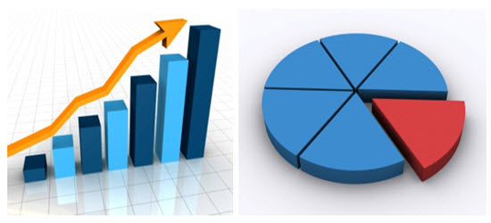 Making Graphs Percentages Pie