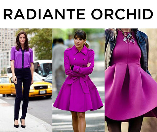 radiante orchid