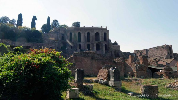 The Palatine and the Roman Forum
