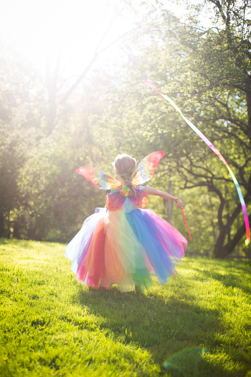 Rainbow Butterfly Flower Fairy Blog A La Cart