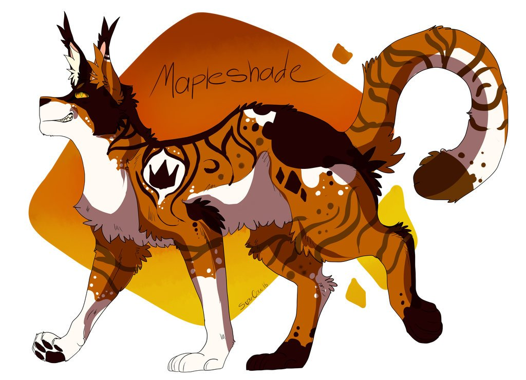 Warriors Cats Mapleshade