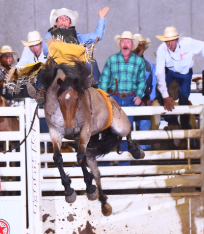 Johnson Heading To National High School Finals Rodeo