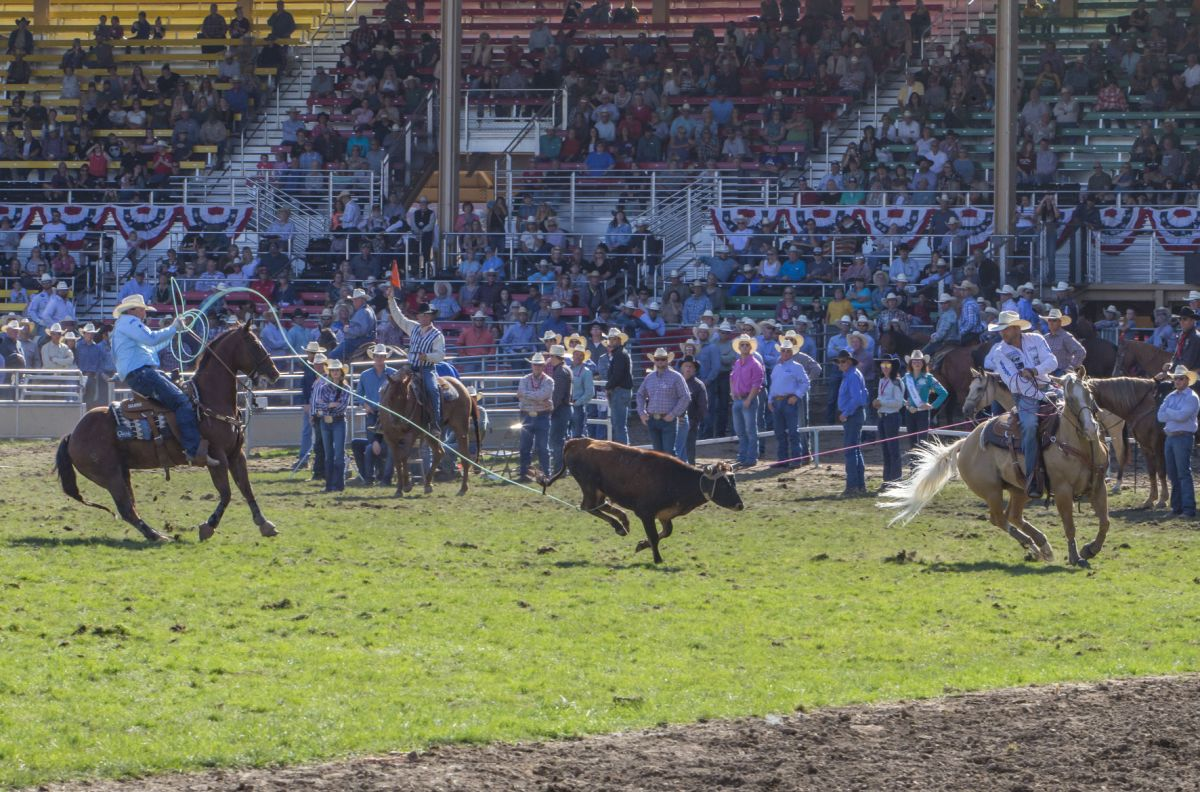 Rodeo Brazile Returns To Dominate Sports