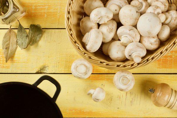 كيف تطبخ Champignons