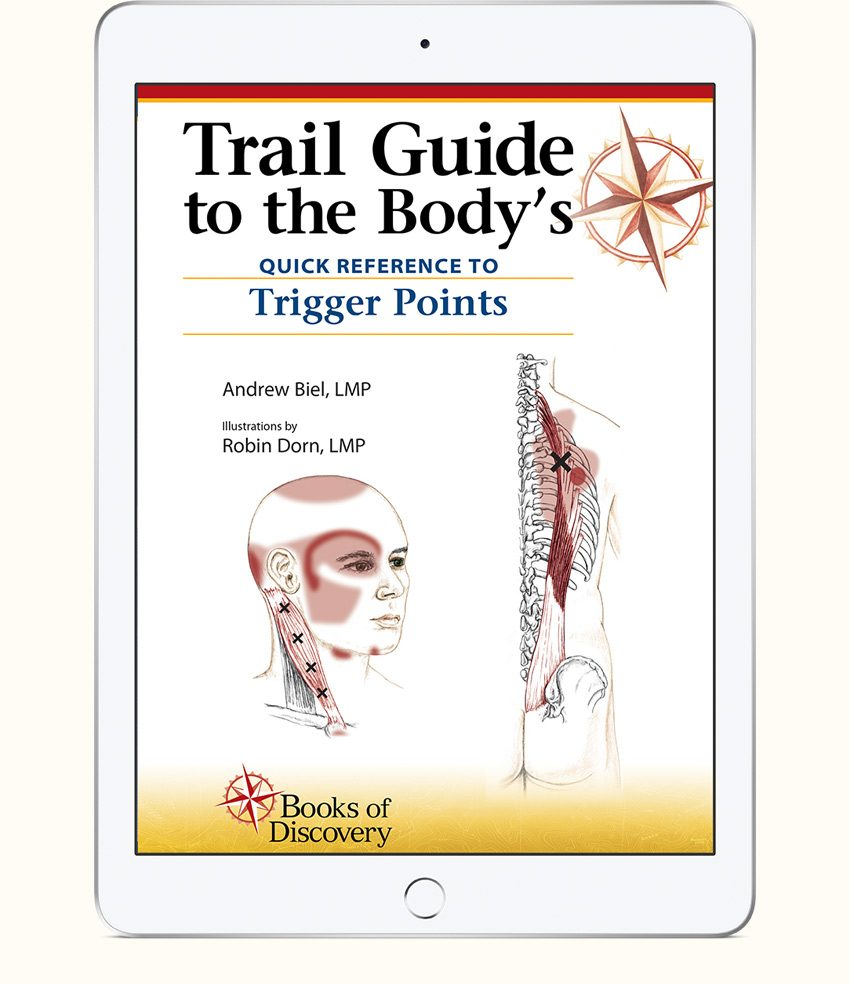 Trail Guide Body