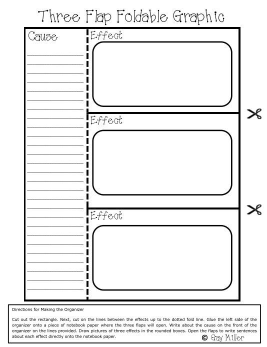 Essay Organizer 5 Compare Contrast Paragraph Graphic