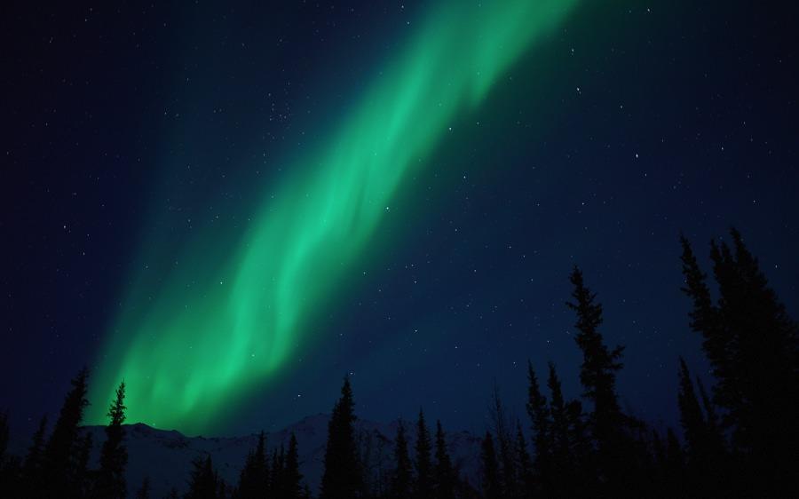 Northern Light Forecast Alaska