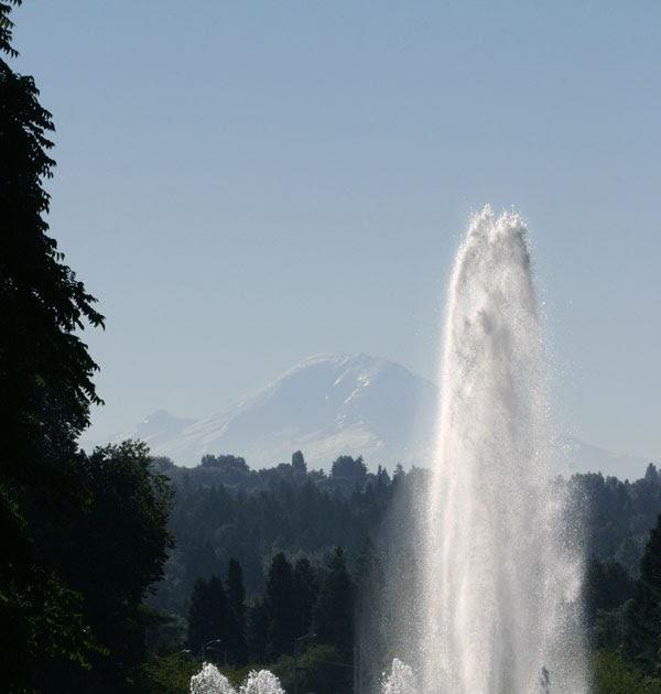 View Lake Washington Uw