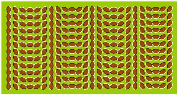 optical illusions eye tricks # 39